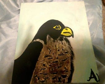 Peregrine Falcon-Watercolor Painting-Hand Painted-One of a Kind-8x10 Canvas Panel
