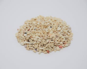 Crushed Coral / 0.5 lb Bag / Grade #5 / Real from the Ocean/ Wholesale / DIY Projects / Terrariums / Coral Sand
