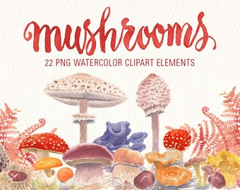 Mushrooms watercolor clipart Set