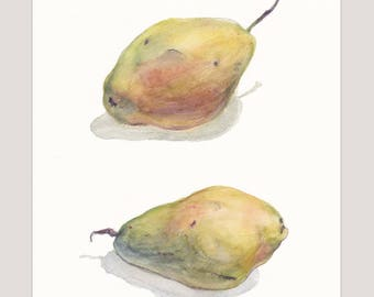 Charming original botanical watercolor artwork / Two pears on a white background / Realistic food art / Wall art decor / Green pear / Fruits