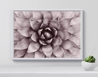 Succulent Art Print, Botanical wall art, Gardener gift, Botanical Print, Succulent Print, gardening gift, gardener wall Decor, Printable