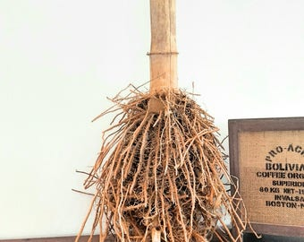 Genuine bamboo root, possibilities of decoration