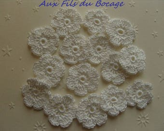 Mini crochet flowers, set of 15 white cotton, 2.5 cm, appliques