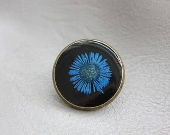 Round pine 2.5 cm bronze, resin and dried flower Daisy Blue