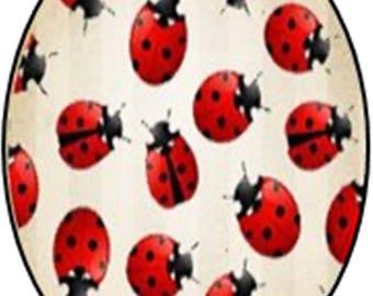 1 cabochon 25mm x 18mm Ladybug glass
