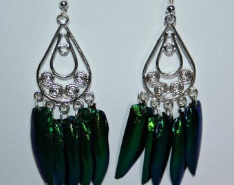 Elytras beetle wings earrings