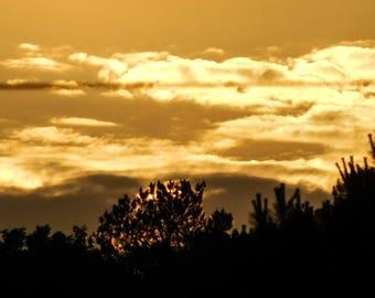 Golden Sunset, Photography Print