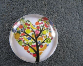 Cabochon 20 mm tree of life theme