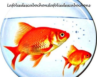 "Paste cabochon resin 25 mm for jewelry ""goldfish"" theme"