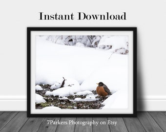 Printable Spring Wall Art;Woodland Nursery Decor Printable;Bird Prints Digital Downloads;Robin Bird Art;Bathroom Printable;Gift Nature Lover