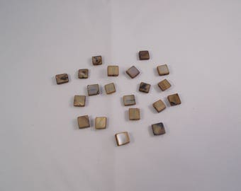 1 set of 20 square shell beads