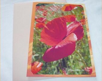 """Carte double """" Coquelicots """" 10,5x15cm de Céline Photos Art Nature"""