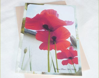 "Carte double "" Trois coquelicots ... "" 10,5x15cm de Céline Photos Art Nature"