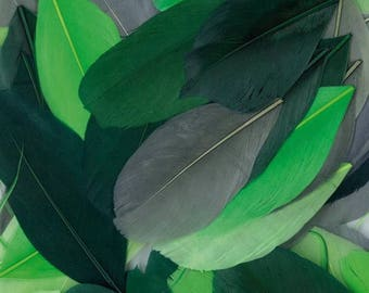 Feathers cut green shades - 4 to 10 cm - 10 gr - 150 feathers around, new