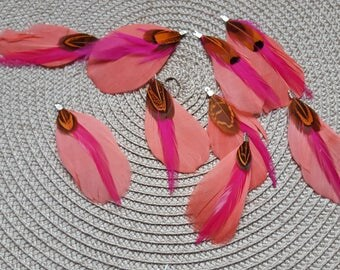 The 2 sets of pink orange brown color with silver feathers