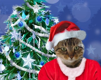 Your cat in Santa Claus costume: costume cat customizable