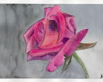 Original watercolor rose