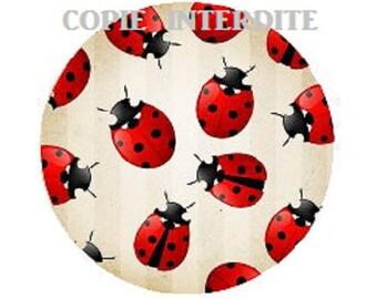 25mm, cabochon beautiful ladybugs
