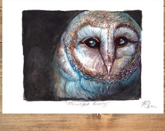 A4 print Barn Owl in the Moonlight