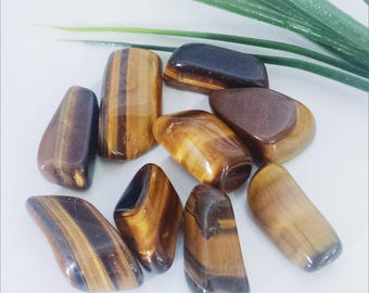 Tigers Eye Tumbled Stone Approx 3cm