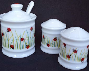 Salt, pepper and mustard in porcelain. Ladybug in the Meadow scene.