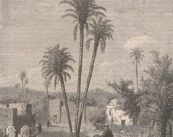 Algeria 1857, El-Maia (Little-Ean), Oasis Located three days west of El-Aghouat, Old Antique Vintage Engraving Art Print, Men, Child, Horse