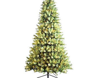 Season's Design 6.5FT Douglas Fir Christmas Tree SD-92197650000