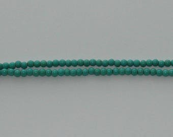 20 4 mm turquoise howlite beads