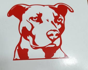 Pittbull decal