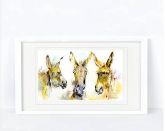 Three Amigos - Donkey Print. Printed from an Original Sheila Gill Watercolour. Fine Art, Giclee Print, Hand Painted,Home Decor