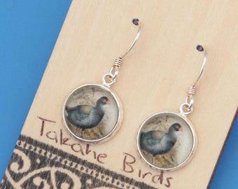 New Zealand Takahe bird, vintage art print, Earrings, glass dome art, sterling silver earring wires