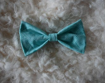 Teal Pet Bow Tie for RAINN