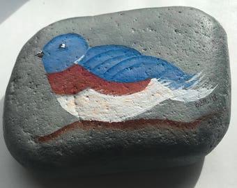 Bluebird Painted Rock