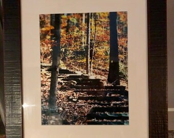 16x20 FRAMED ART - Into the Woods