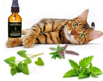 Catnip Fields Signature Essential Oil Mister