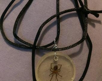 Black Widow Resin Specimen Necklace