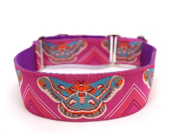"1.5"" Clarice Starling Lavender martingale or buckle dog collar"