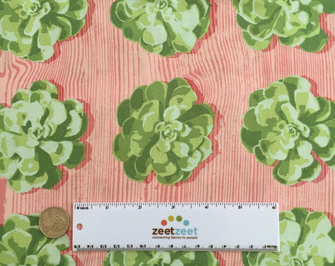 SUCCULENTS Cactus Pink Green Tropical Plant Quilt Fabric - by the Yard, Half Yard, or Fat Quarter Fq from Cali Mod by Joel Dewberry