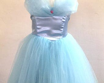 Cinderella Dress  Cinderella Ball Gown