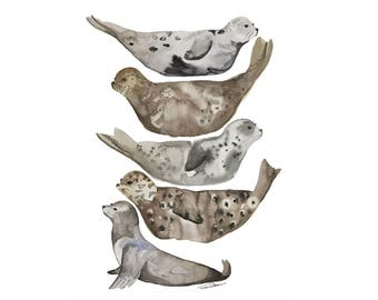 Sea Life Art Print, Sea Life Painting, Sea Life, Seal Art, Watercolor Seal, Sea Life Decor, Harbor Seal, Sea Life, Seal Wall Art