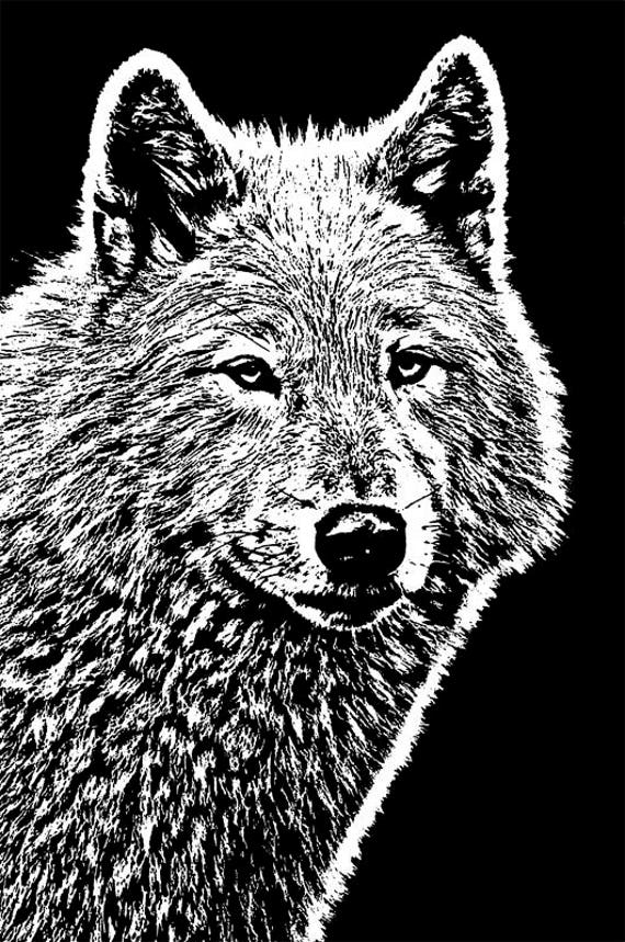 """female white wolf printable art digital download image graphics black and white illustration png jpg animals wolves abstract art 9.4"""" x 14"""""""