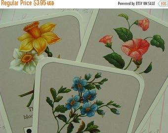 ONSALE 3 Stunning Victorian Domino Garden Tea Cards for Mixed Media or High Tea Garden Party N010