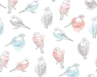 "Cotton by the yard 100% Cotton Riley Blake Designs ""Desert Bird Multi"""