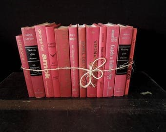 Red Berry Mix - Vintage Books for Decor - Books by Color- Foot of Books