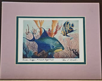 Fish Watercolor Painting/Pam E Webb Reproduction/Beach House Decor/Queen Tiggerfish/Tropical Painting/French Angel Fish/Vintage Artwork/90s