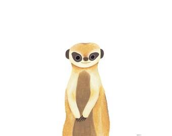 Meerkat_[Millim]