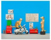 Vespa scooter animal art print: Toodle Pip