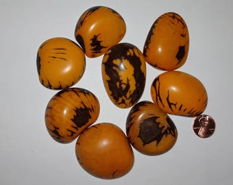 8 Yellow, Tagua Nut Slices, Top Slices, NOT DRILLED, Organic Beads, Natural Beads, Vegetable Ivory Beads, EcoBeads 12