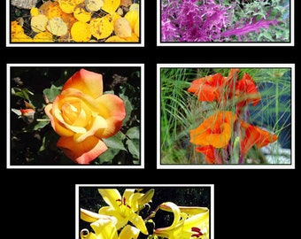 Photo Note Cards - Floral Collection #2