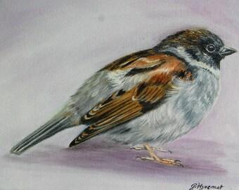 moineau de Paris, oiseaux, peinture à l'huile,Paris,  animaux, art animalier
